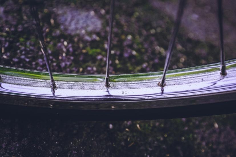 schwinn-typhoon-1967-36